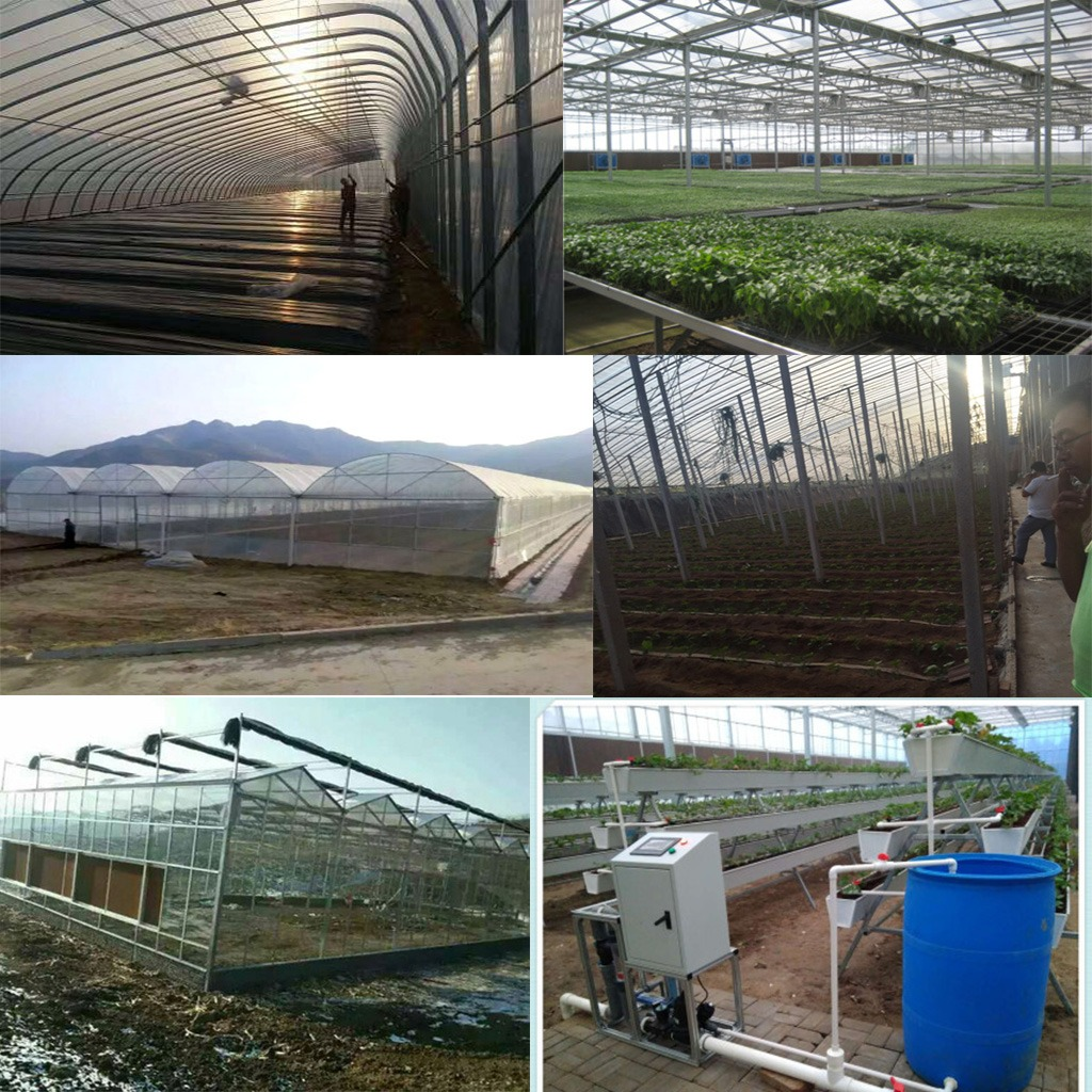 SHOUGUANG SHANHE GREENHOUSE ENGINEERING CO